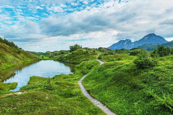 South Central Alaska Photograph - The Trail Leading To Lost Lake by Michael Jones