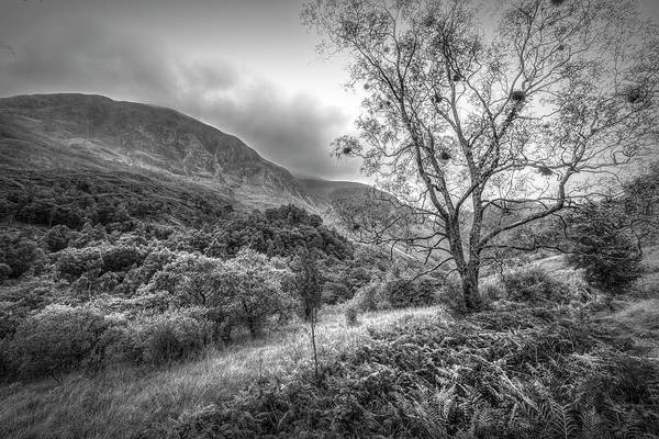 Photograph - The Trail To Ben Nevis In Black And White  by Debra and Dave Vanderlaan
