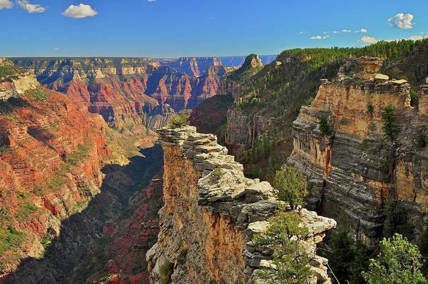 North Rim Photograph - The Transept, North Rim, Grand Canyon by Stevedunleavy.com