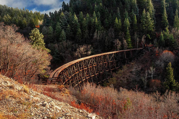 Photograph - The Trestle  by Harriet Feagin