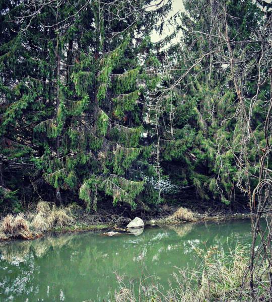 Photograph - The Two Meet by Cyryn Fyrcyd