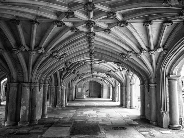 Wall Art - Photograph - The Underbelly by Martin Newman