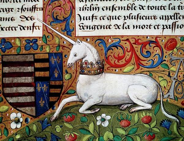 Strawberry Hills Wall Art - Painting - The Unicorn, Detail, Manuscript, 1450, France, 15th Century by French School