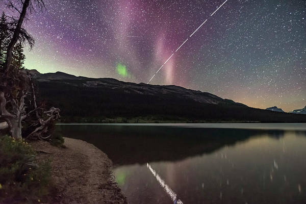 Wall Art - Photograph - The Unusual Steve Auroral Arc Over Bow by Alan Dyer