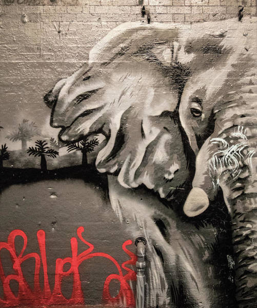 Ink Sketch Photograph - The Urban Elephant by Martin Newman