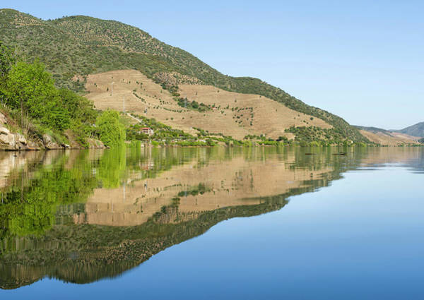 Douro Wall Art - Photograph - The Valley Of River Douro Near Village by Martin Zwick