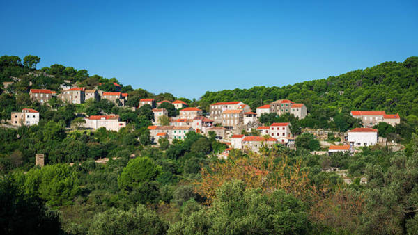 Wall Art - Photograph - The Village Of Polace, Mljet Island by Russ Bishop