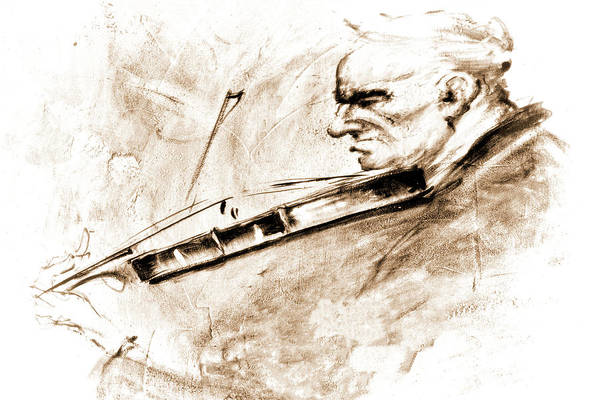 Wall Art - Photograph - The Violinist by Marcia Colelli