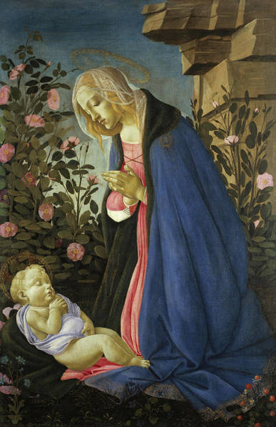 Sandro Botticelli Painting - The Virgin Adoring The Sleeping Christ Child by Sandro Botticelli