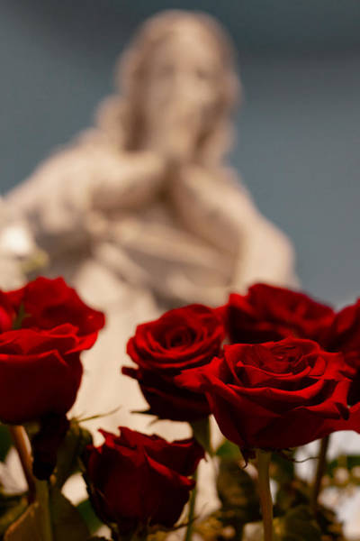 The Virgin With Roses Art Print by Christine Buckley