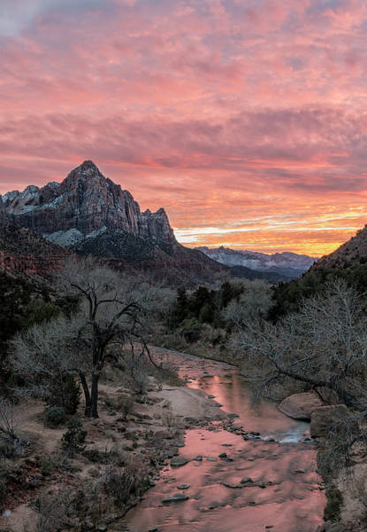 Photograph - The Watchman In Winter by Loree Johnson