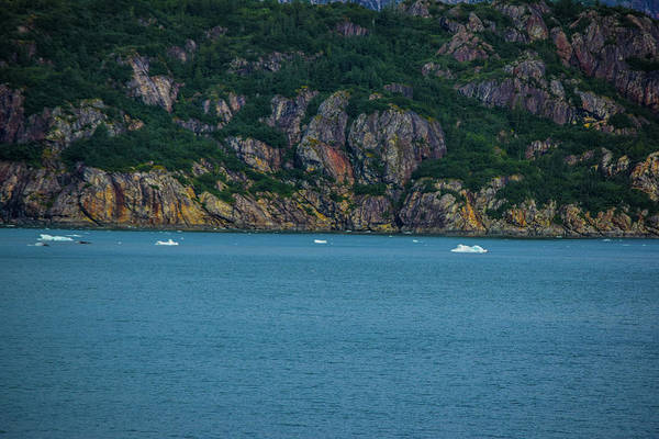 Wall Art - Photograph - The Water Is Cold  by Edward Garey