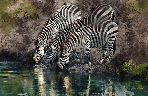 Digital Art - The Waterhole by Peter Kennett