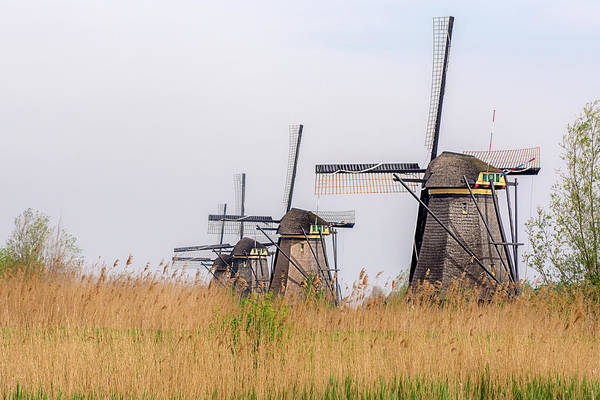 Photograph - The Windmills Of Kinderdijk by Wolfgang Stocker