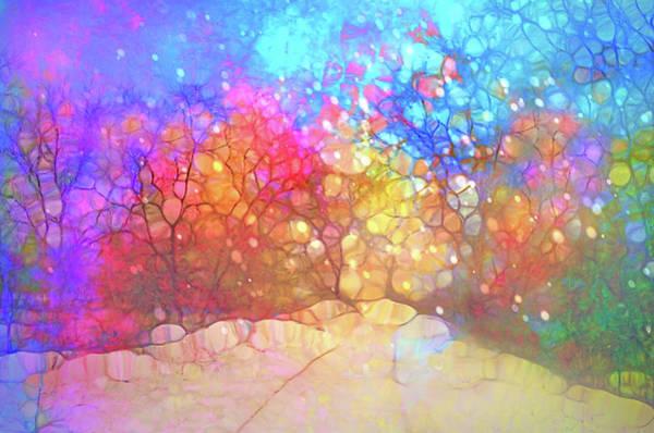 Cheery Digital Art - The Winter Path Dreams Of Summer Nights by Tara Turner