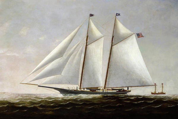 Wall Art - Painting - The Yacht America, 1877 by Charles Raleigh