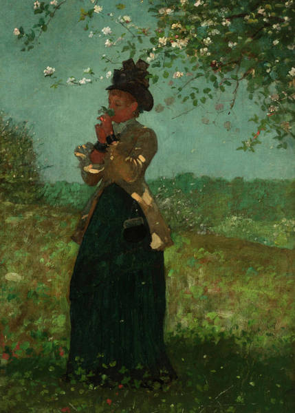 Wall Art - Painting - The Yellow Jacket, 1879 by Winslow Homer