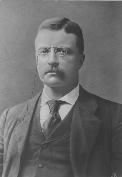 Us President Photograph - Theodore Roosevelt by Time Life Pictures