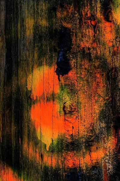 Photograph - Third Street Bridge Orange Face by Jerry Sodorff