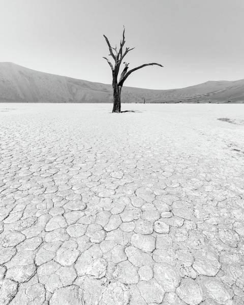 Photograph - Thirst by Dalibor Hanzal