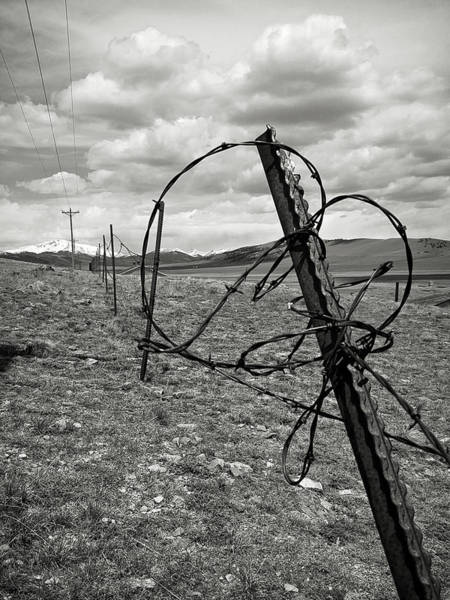Photograph - This Old Fence by Carl Young