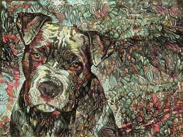 Digital Art - Thor The Mighty Pit Bull by Peggy Collins