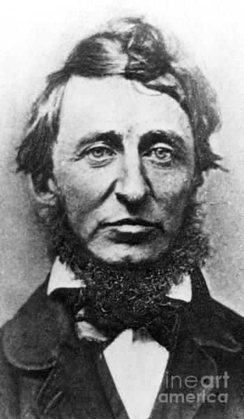 Wall Art - Photograph - Thoreau  by American School