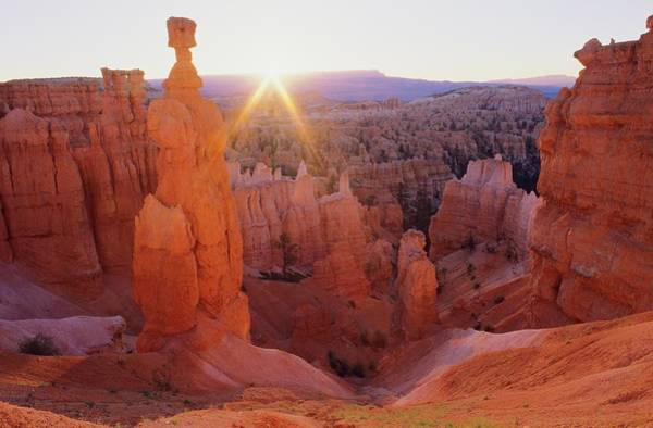 Desert View Tower Photograph - Thors Hammer, Bryce Canyon National Park by Design Pics