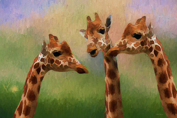 Painting - Three Amigos - Painted by Ericamaxine Price
