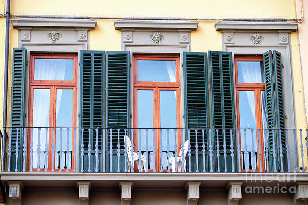 Photograph - Three Balcony Doors At Piazza Della Signoria In Florence by John Rizzuto