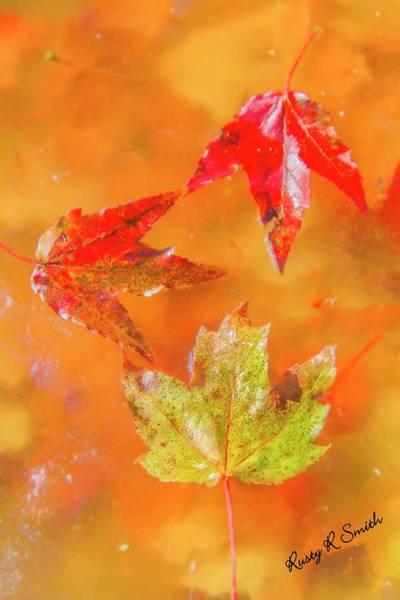 Digital Art - Three Fallen Leaves. by Rusty R Smith
