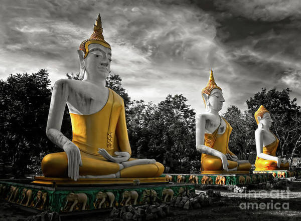 Wall Art - Photograph - Three Golden Buddhas by Adrian Evans