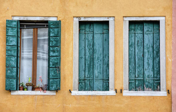 Photograph - Three Green Windows Of Venice by David Letts