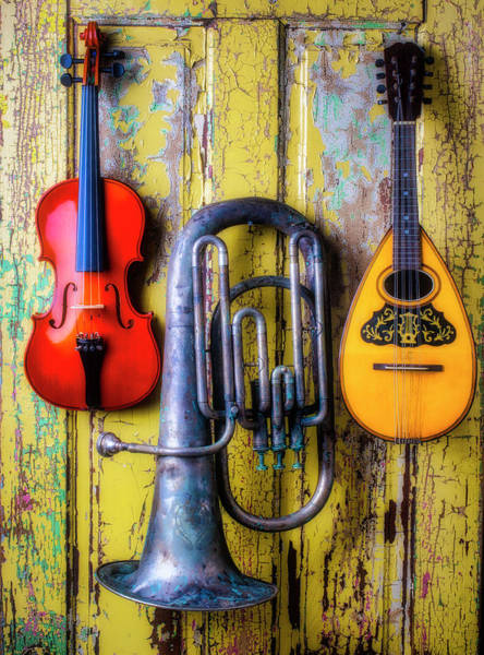 Wall Art - Photograph - Three Instruments by Garry Gay