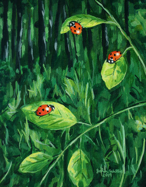 Wall Art - Painting - Three Ladybugs by John Wallie