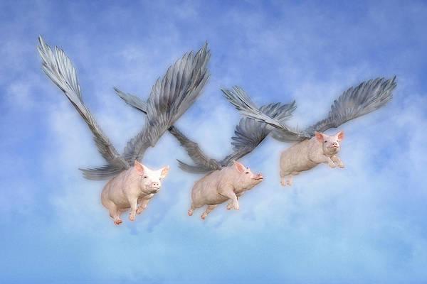 Mystic Digital Art - Three Little Pigs  by Betsy Knapp