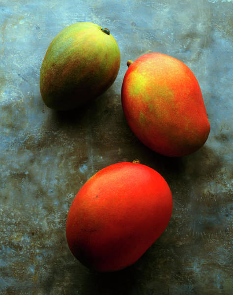 Mangos Photograph - Three Mangoes, Two Ripe, One Green On by Kevin Summers