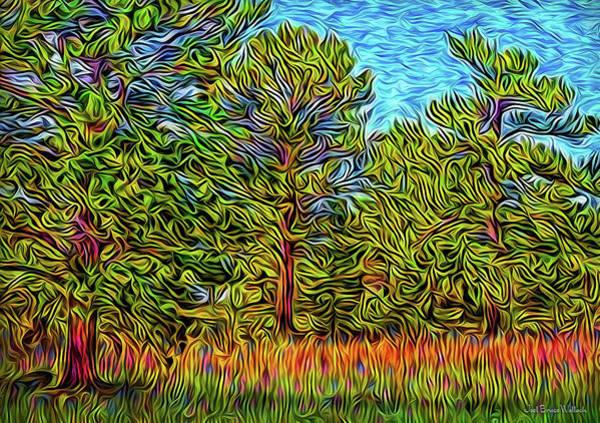 Digital Art - Three Meadow Trees by Joel Bruce Wallach