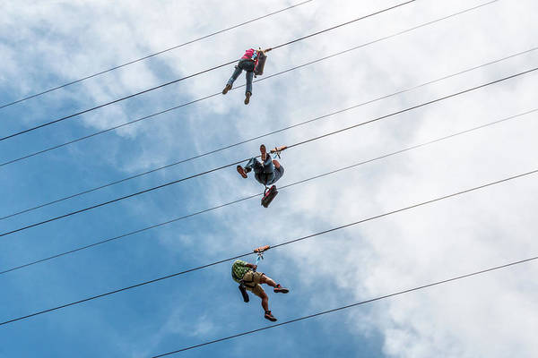 Photograph - Three On A Zip Line by SR Green