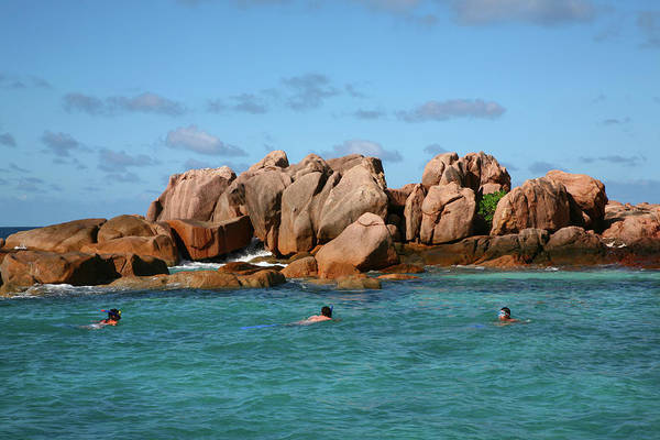 Snorkeling Photograph - Three People Snorkeling Near Granite by Max Paoli