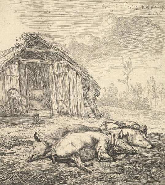 Relief - Three Pigs Lying On Their Sides by Karel Dujardin