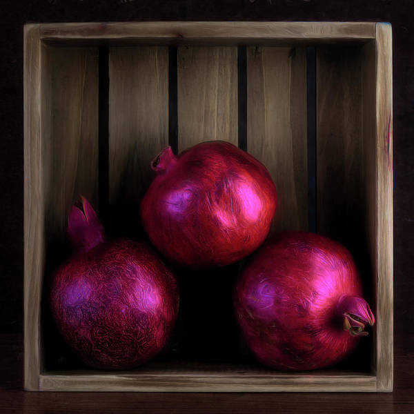 Wall Art - Photograph - Three Pomegranates by Tom Mc Nemar