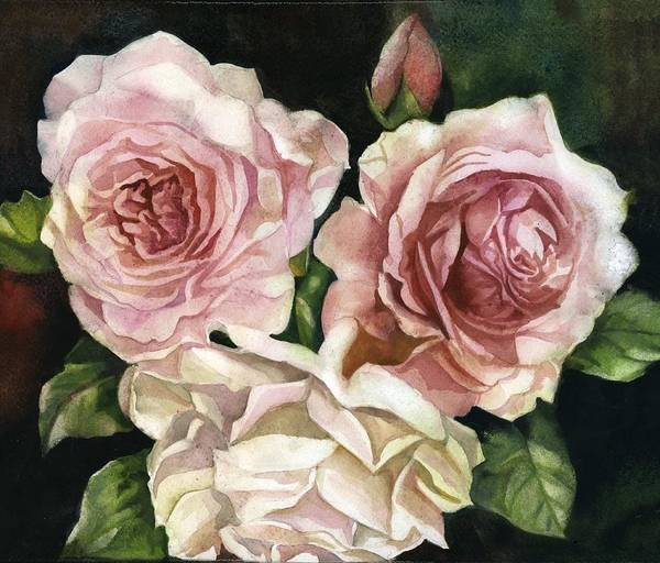 Painting - Three Roses by Alfred Ng