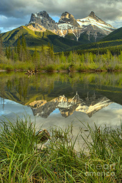 Photograph - Three Sisters Grassy Reflection Portrait by Adam Jewell