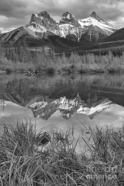 Photograph - Three Sisters Grassy Reflection Portrait Black And White by Adam Jewell