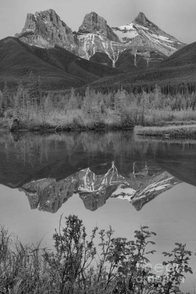 Photograph - Three Sisters Sunrise Spring Portrait Black And White by Adam Jewell