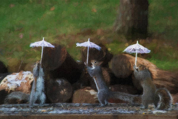 Photograph - Three Squirrels Holding Their Umbrellas    Paintography by Dan Friend