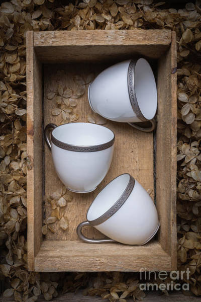 Photograph - Three Tea Cups In A Wooden Box by Edward Fielding