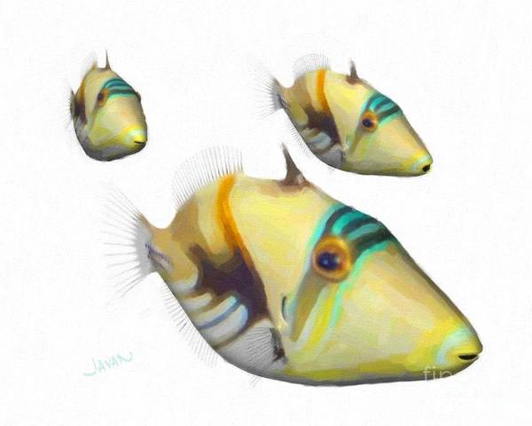 Andrew Jackson Wall Art - Painting - Three Triggerfish by Andrew Jackson