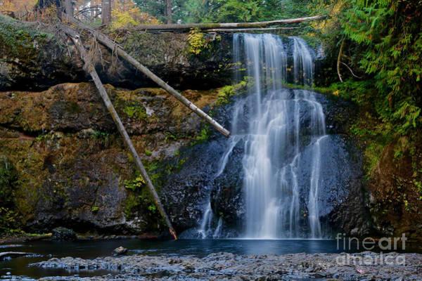 Wall Art - Photograph - Three Trunk Waterfall by American School